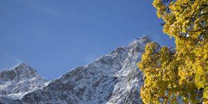 Berg Tirol